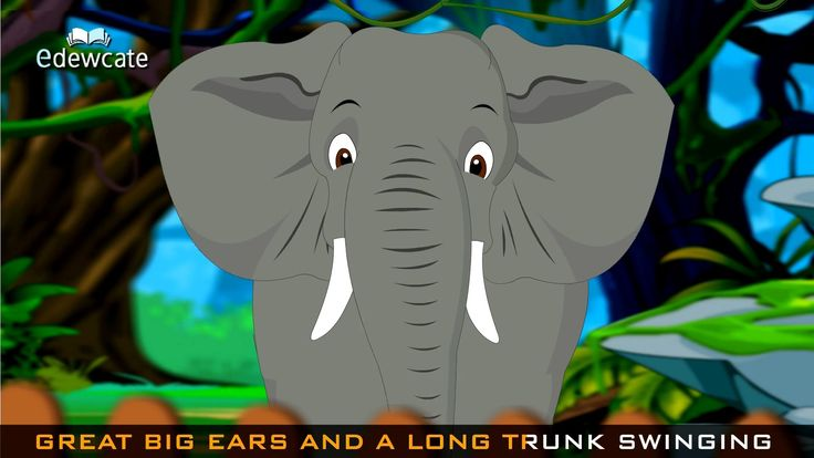Edewcate english rhymes | Going to the Zoo Tomorrow Nursery Rhyme