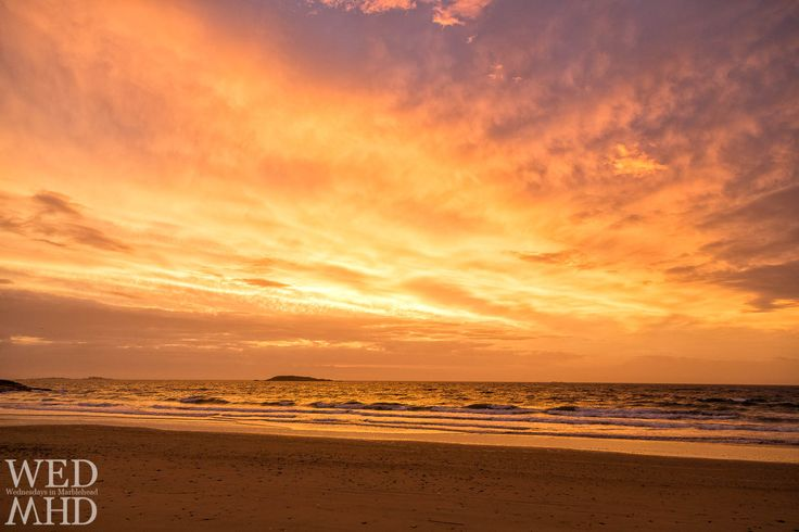 Golden Dawn at Preston Beach https://wednesdaysinmhd.com/2017/11/06/golden-dawn-at-preston-beach/ A couple of weeks ago, an unbelievable dawn erupted in the sky over Marblehead. I left the house as the purple light hit its peak and made a beeline for Preston Beach hoping to catch some of the magical color in the clouds. By the time I parked and got out of the car, the purple had...