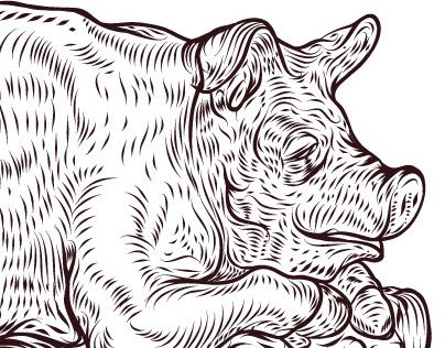 """Check out new work on my @Behance portfolio: """"pigs"""" http://be.net/gallery/35344561/pigs"""