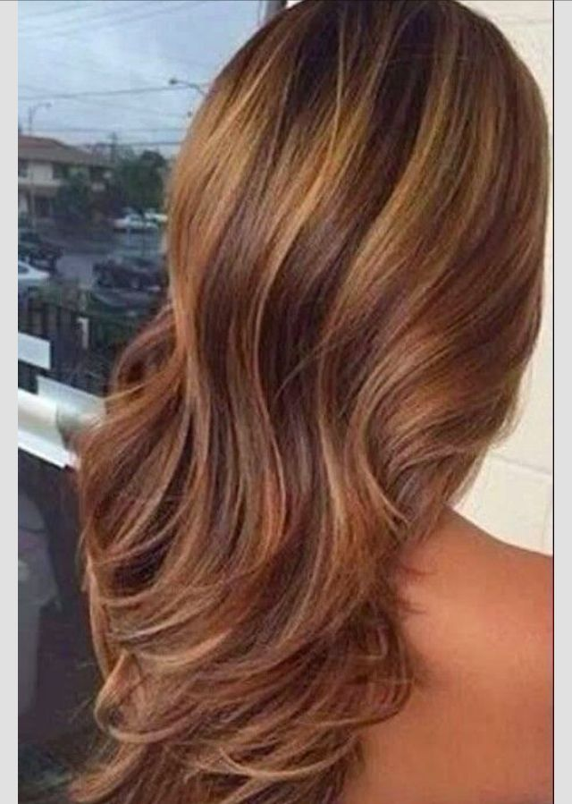 Light brown with highlights