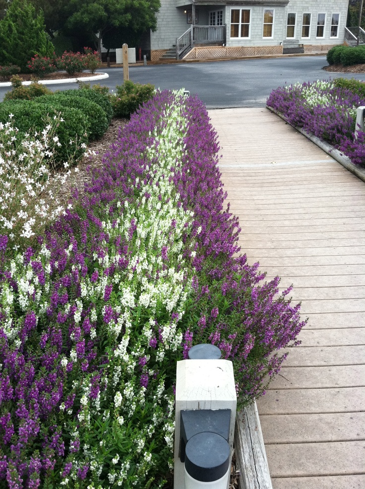 17 Best images about (DIY): YARD PATHWAYS on Pinterest ...
