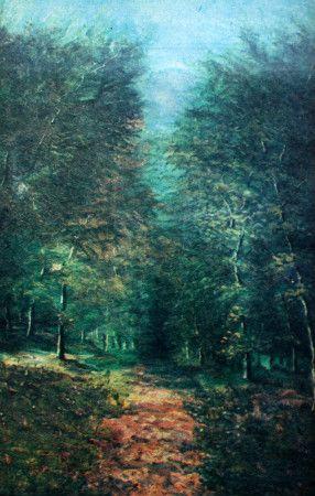 ormanda yol şeker ahmed paşa