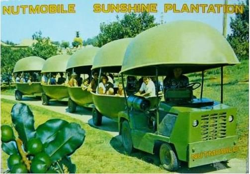 THE NUTMOBILE - I loved riding this at Sunshine Plantation (big Pineapple) at Nambour .