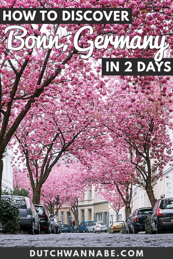 15 Exciting Things To Do In Bonn Germany In 2 Days Europe Travel