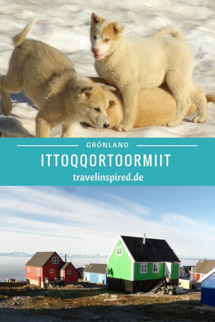Knuffige Schlittenhunde und bunte Häuser erwarten dich in Ittoqortoormit, in Ostgrönland! Entdecke die wunderschöne Landschaft der Arktis auf einer Expeditions Seereise zu den drei arktischen Inseln Spitzbergen, Grönland und Island. Es erwarten dich atemberaubende Fjorde, Berge, Packeis und Wildlife, wie Eisbären, Polarhasen und Moschusochsen. Auf ins Abenteuer! Den kompletten Reisebericht zur Arktis Expedition findest du auf Travelinspired! #seereise #arktis #grönland #spitzbergen…