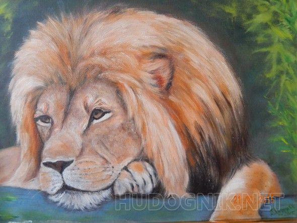 Задумчивый лев В этой жизни всем есть о чем подумать...