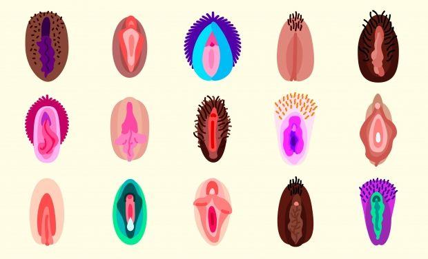emojis vaginas coloridas
