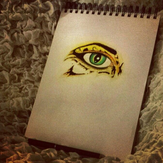 Human-cheetah-eye