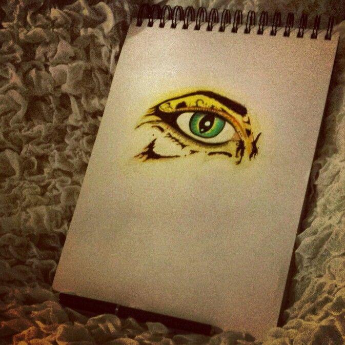 Human-cheetah-eye