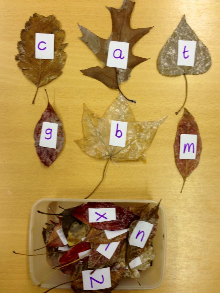 We're going on a leaf hunt! We hid leaves with different letters on around the classroom and asked children what letter they found and where they found it (using positional language). EYFS / pre-school letter recognition, segmenting sounds, spelling words and fun phonics autumn game.