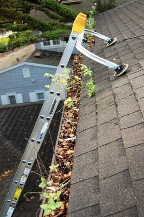 17 Best Ideas About Gutter Cleaning On Pinterest Sump