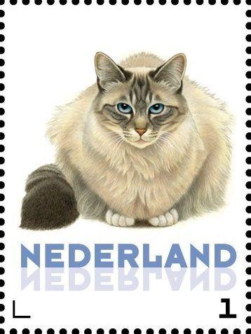 Stamp: Domestic Cat (Felis silvestris catus) (Netherlands - Personalized stamps) (Cats, Francine van Westering) Col:NL 2015-258