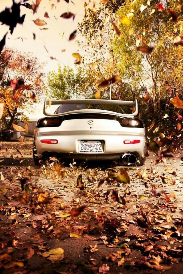 ♂ Luxury car autumn leaves #wheels #vehicle Rx-7