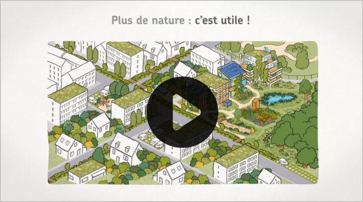 Vidéo Natureparif sur la biodiversité en ville et sur le bâti, pour un urbanisme écologiquement responsable.