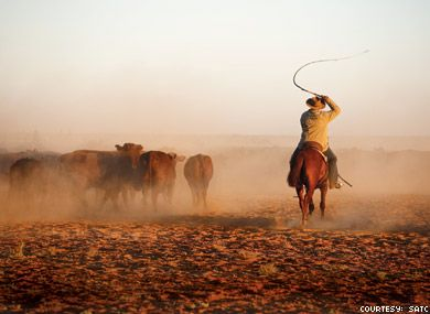 My life passion, the bush is a way of life  Cant wait to get back on a cattle station - even more fitter for the long days work