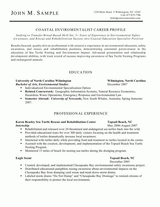 Best 25+ Resume template australia ideas on Pinterest Inspire - environmental engineer resume