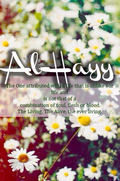 .Al - Hayy