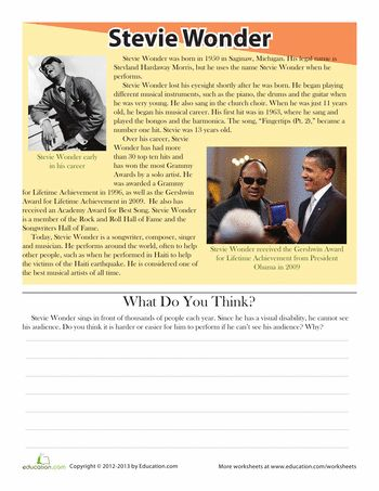 Worksheets: Stevie Wonder Biography