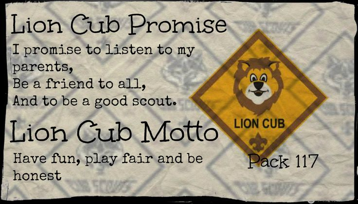 12 Best Cub Scout Lion Images On Pinterest Animals