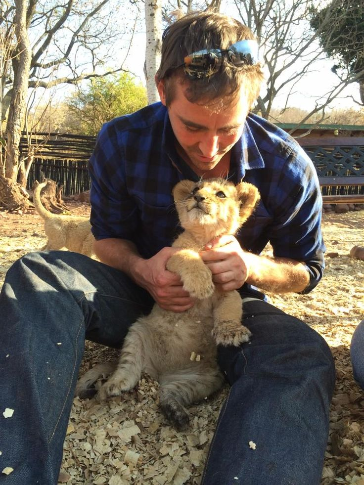 Lee Pace playing with a cub. Could there be anything more perfect?  No. The answer is no.