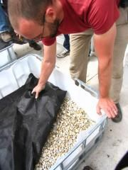 <p>Wicking beds are a unique and increasingly popular way to grow vegetables. They are self-contained raised beds with built-in reservoirs that supply water from the bottom up - changing how, and how much, you water your beds. In this article, we'll talk about how wicking beds work and why we love them. We'll also show you some great examples and leave you with ideas and instructions for creating your own.</p> <div class=