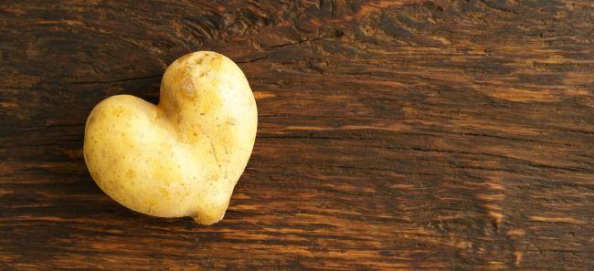 Jak wykonać sadzonkę rózy w ziemniaku