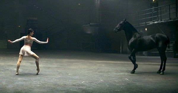 A Ballerina Starts To Dance, But When The Horse Does THIS, My Jaw Dropped