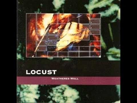Locust : Moist Moss