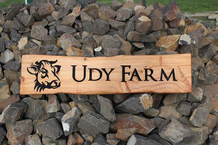 Udy farm, macrocarpa carved wooden sign, coolest last name for a dairy farmer ever. Dairy sign.