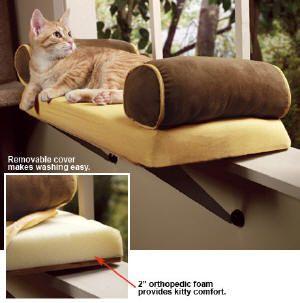 Best 25 Cat Window Perch Ideas On Pinterest Cat Window Cat Room And Cat Grass