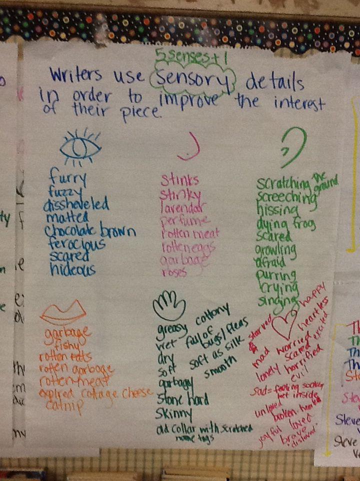 Narrative essay with sensory details