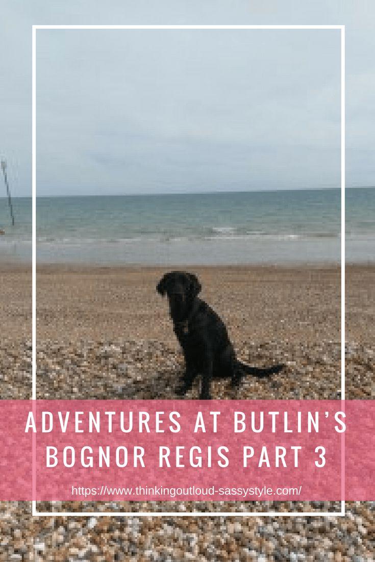 Dog on the beach near the sea. Text overlay 'ADVENTURES AT BUTLIN'S BOGNOR REGIS PART 3'