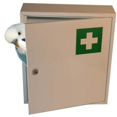 L'armadietto dei medicinali per i pappagallini