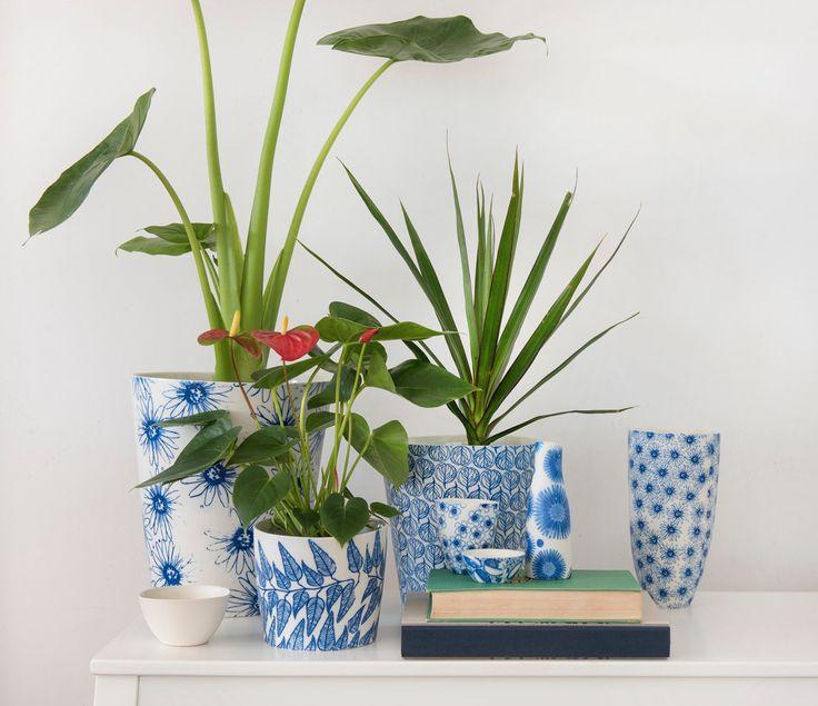 Eucalypt Homewares handmade porcelain tableware