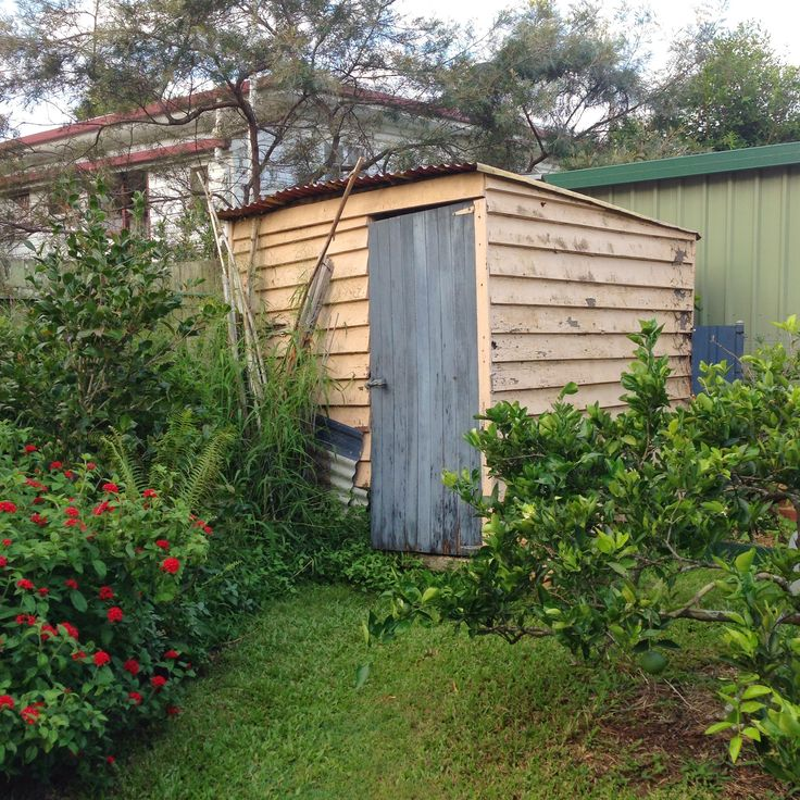 The shed at the end of my parent's garden. myaustraliangardenartresidency