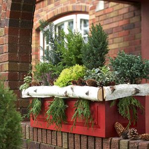 Seasonal Window Box Greenery and other great holiday decorating ideas