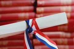 Le diplôme d'accès aux études universitaires (D.A.E.U. )