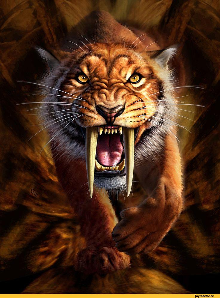art,арт,красивые картинки,саблезубый,тигр,живность