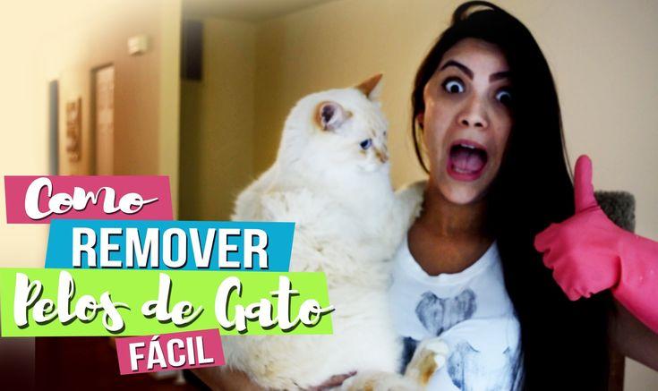 REMOVER PELOS DE GATO RÁPIDO - Aloka por Gatos #58