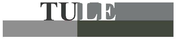 TULE staat voor Tussendoelen en leerlijnen. En SLO staat voor Stichting Leerplan Ontwikkeling. Op deze website staan voor de vakgebieden Nederlands, Engels, Friese taal, Rekenen/wiskunde, Oriëntatie op jezelf en de wereld, Kunstzinnige oriëntatie en Bewegingsonderwijs de kerndoelen beschreven. Elk kerndoel is onderverdeeld in meerdere leerlijnen, waarvan de tussendoelen voor alle groepen uit het basisonderwijs worden beschreven.