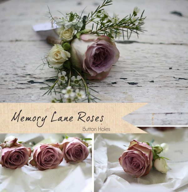 Memory Lane Roses - buttonholes ~ Get To Know Your Wedding Flowers