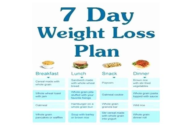 7 day food plan to lose weight