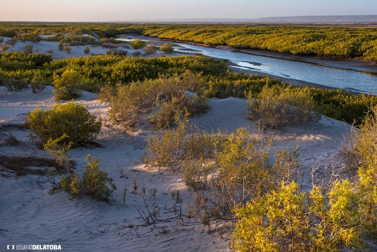 El Dátil, Baja California Sur  #josafatdelatoba # #mexico #bajacaliforniasur #loscabos #landscapephotography #cabophotographer