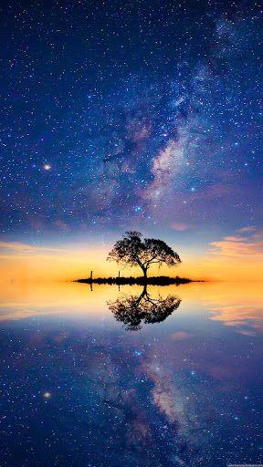 Hd Oppo Wallpaper Iphone Wallpaper Sky Tree Hd Wallpaper S5 Wallpaper Beautiful night scenery wallpaper hd