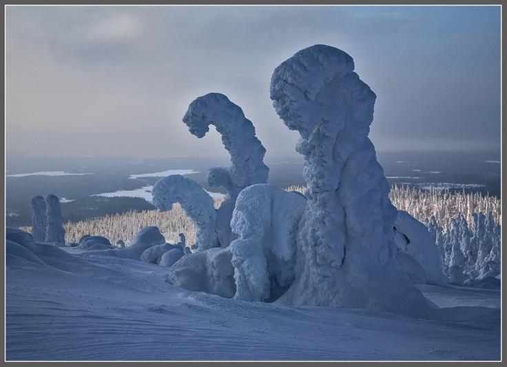 Winter in North-western Karelia, Russia