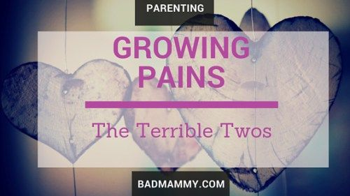 Growing Pains - Hello Terrible Two - Bad Mammy.  My little man has just turned two, and these toddler years are turning quite stormy - it's not all bad but some times it can be very frustrating. Can you relate?