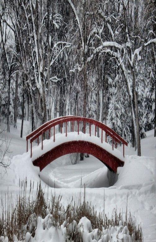 Winter...Snow on the bridge