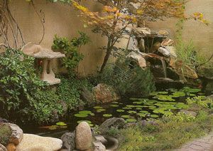 Best 25 Small Ponds Ideas On Pinterest Small Garden