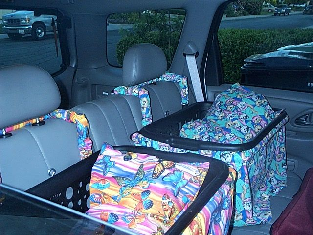 Got a ton of dogs--or dogs that want to be by themselves--then you need two Zoe dog car seats so traveling is fun for everyone including the human. Search Zoe dog car seat on Ebay. Zoe dog car seats make Traveling fun for everyone!