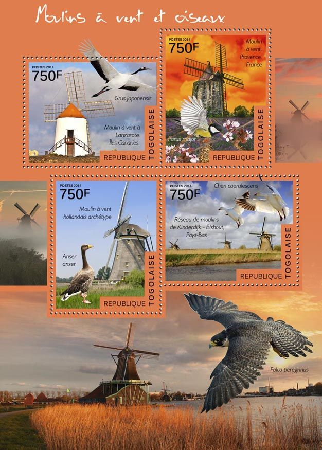 TG 14517 a	Windmills and birds (Grus japonensis, windmill in Lanzarote, Canary Islands, Parus major, windmill in Provence, France, Anser anser, Archetypical Dutch windmill, Chen caerulescens, Windmill network in Kinderdijk-Elshout, Netherlands)